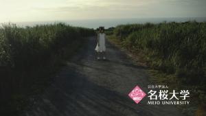 神田朝香CM名桜_6