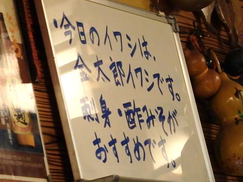 07金太郎イワシ