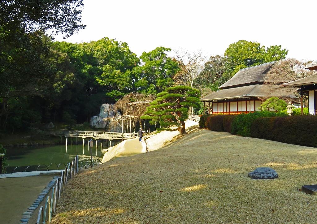 20170127 後楽園今日の園内風景 (1)
