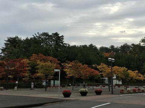 2016-10-28_09-55-35.jpg