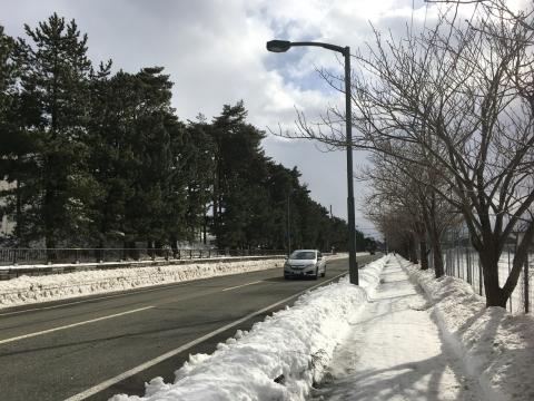 2017-01-28_13-29-21.jpg