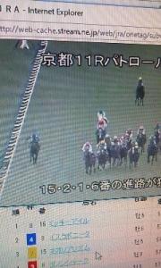 161121_マイルチャンピオン
