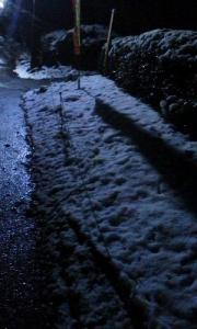 161124_雪の日 所沢