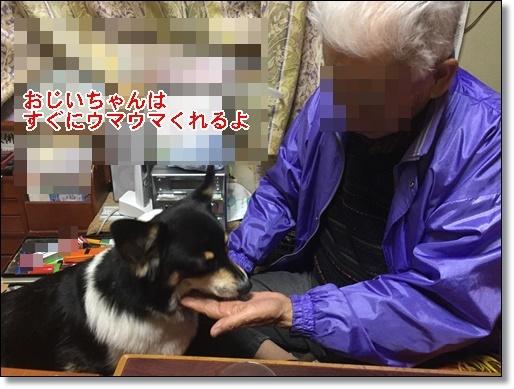 おじいちゃん2017128