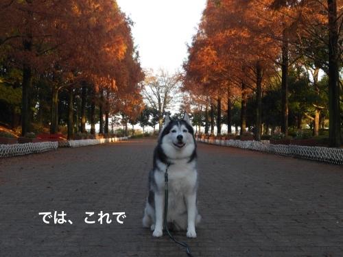 P1010740_Fotor.jpg