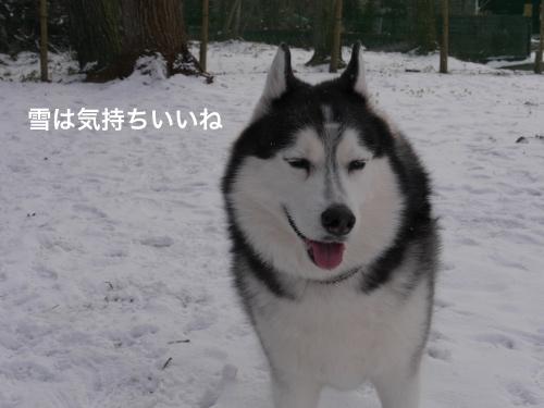 P1010854_Fotor.jpg