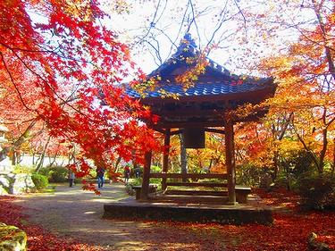 20161126京都 (14)