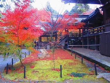 20161126京都 (41)