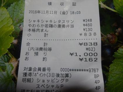 mini_DSC01591.jpg