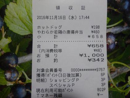 mini_DSC01651.jpg