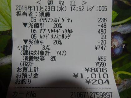 mini_DSC01721_2016112315393668c.jpg