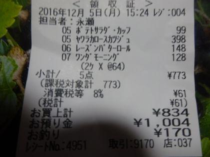 mini_DSC01835.jpg