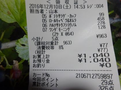 mini_DSC01886_201612101925042c9.jpg