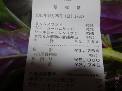 mini_DSC02049_201612251839464d4.jpg
