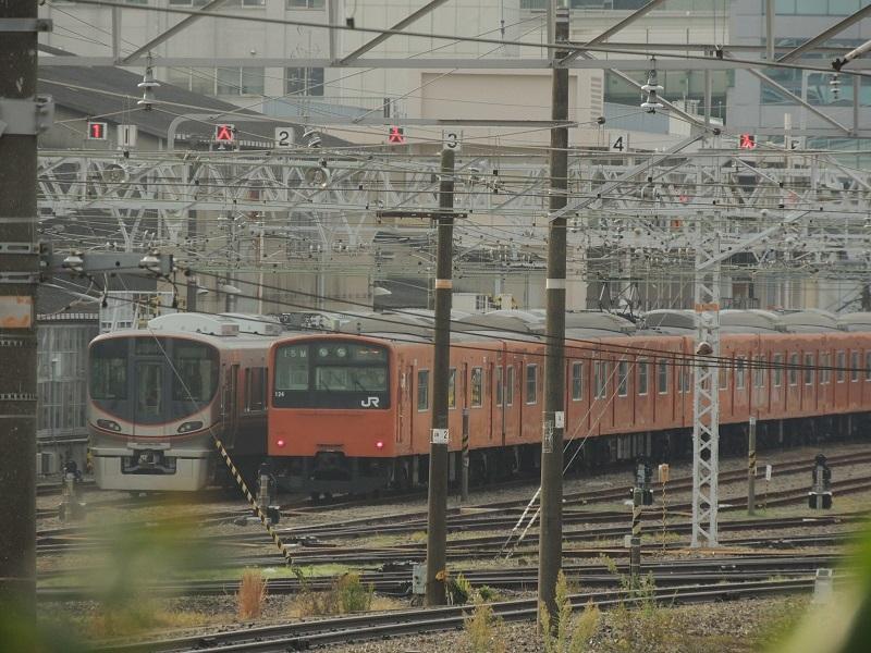 DSCN9989.jpg