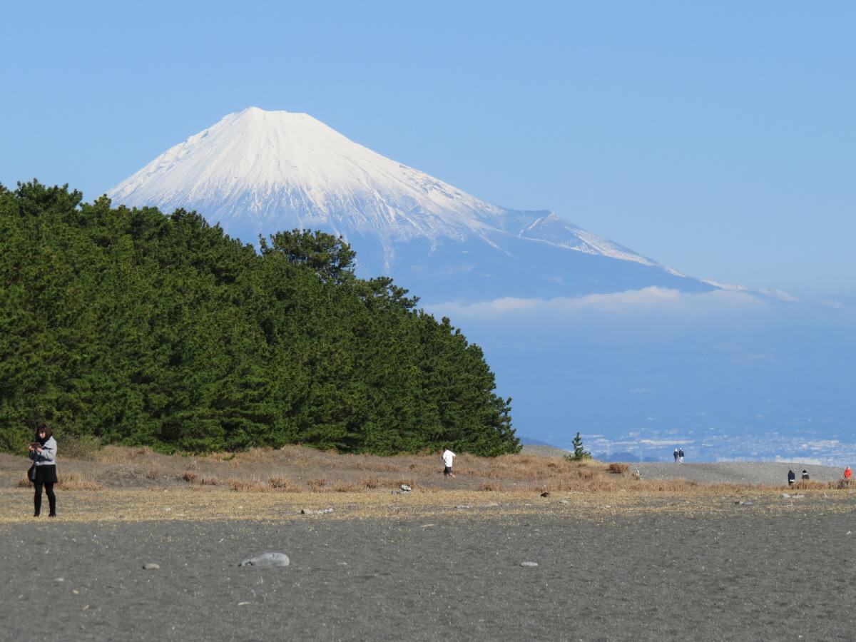 富士山隠れスポット美保