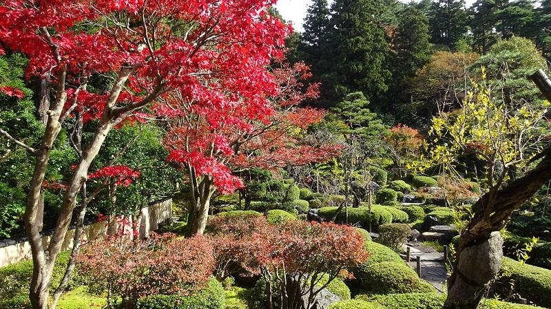 翡翠園の紅葉