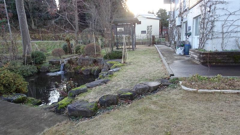 冬枯れの庭