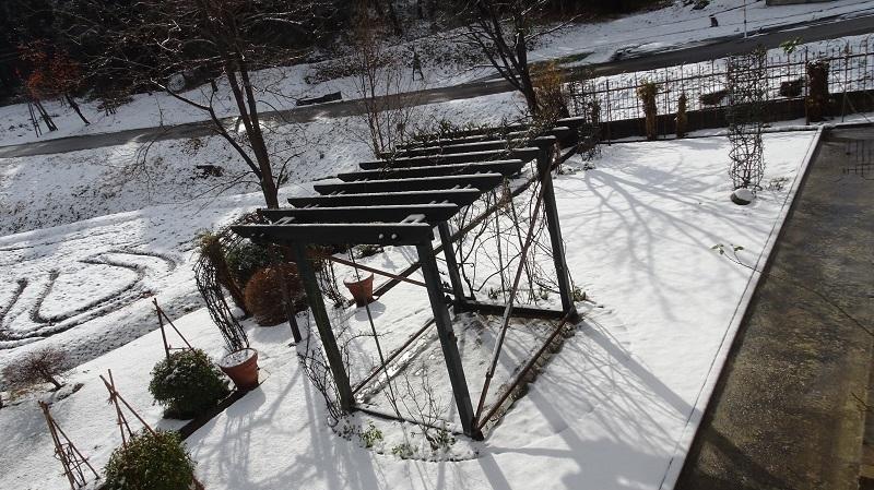 初雪パーゴラ