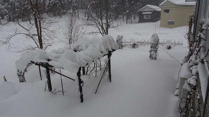 雪のパーゴラ