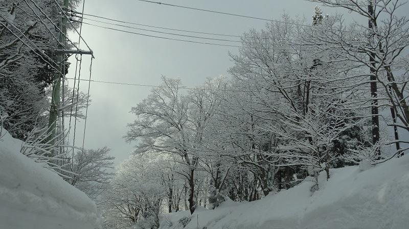 1雪国の道