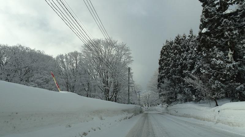 雪国の道2
