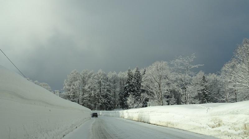 雪国の道4