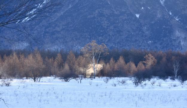 二月の小田代ヶ原