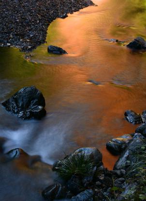 秋色を写す水流