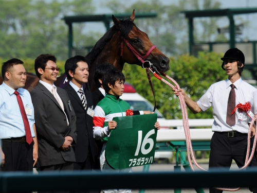 【競馬ネタ】美しい「主な勝ち鞍」
