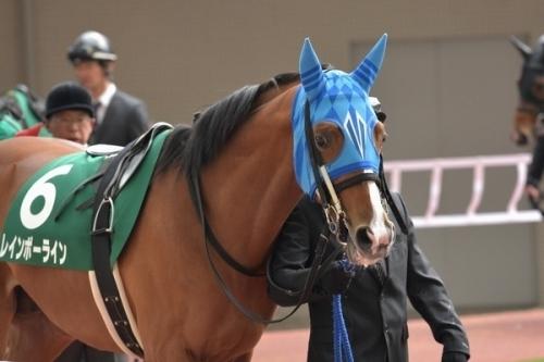 【ジャパンカップ】レインボーライン、鞍上はルメールに!浅見師が明かす
