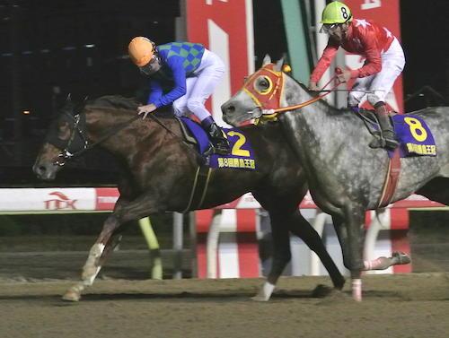【勝島王冠】セイスコーピオン(元1600万下条件馬)、たった3戦で完全に南関最強クラスになってしまう