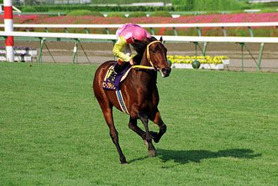 【競馬】騎手に初G1をプレゼントした馬ってかっこいいよな