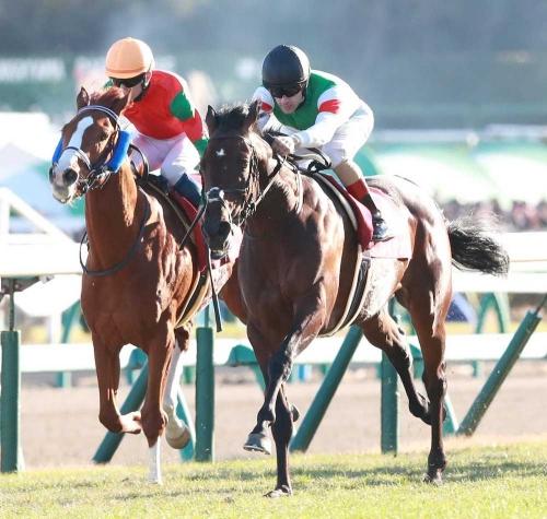 【競馬】藤澤和雄先生来年どうなってるかな