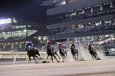 【競馬】「夜の」+「競馬用語」で一番エロい奴が優勝