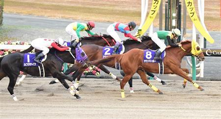 【競馬】チャンピオンズカップ、東京大賞典に負ける 日本のダート競走の頂点から陥落