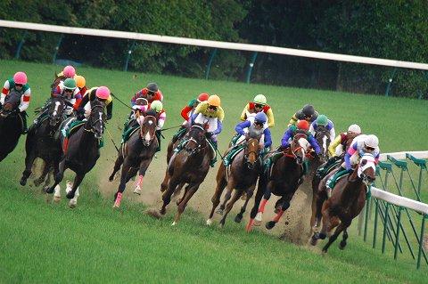 【競馬】4角、最後の直線で最強の手ごたえだった馬