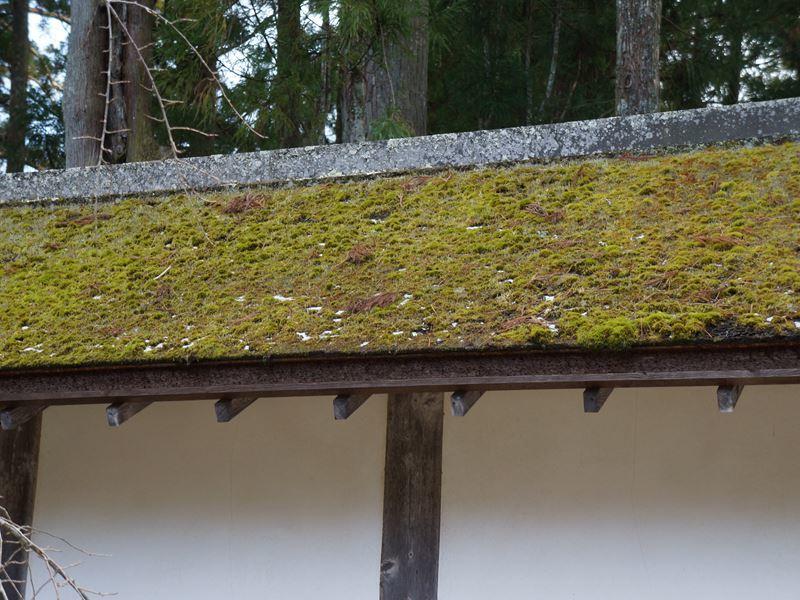 高野山の屋根