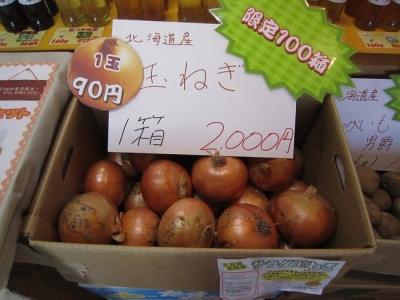 北海道産玉ねぎ2016