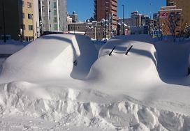 20161224大雪2