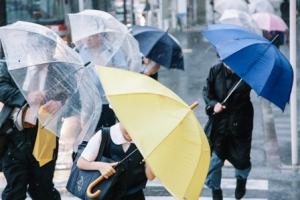 000雨 taifu-0I9A5577_TP_V
