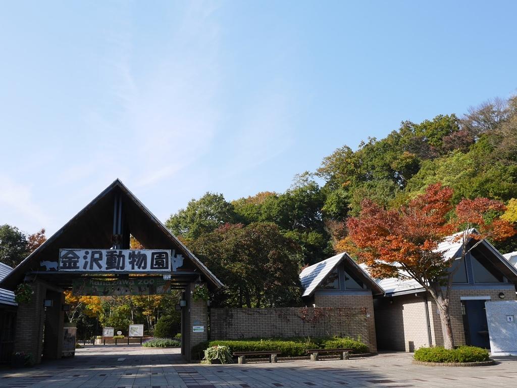 161117文庫鎌倉-08