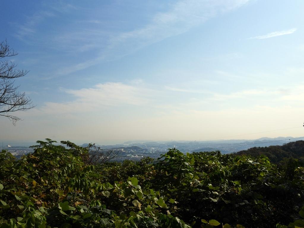 161117文庫鎌倉-05