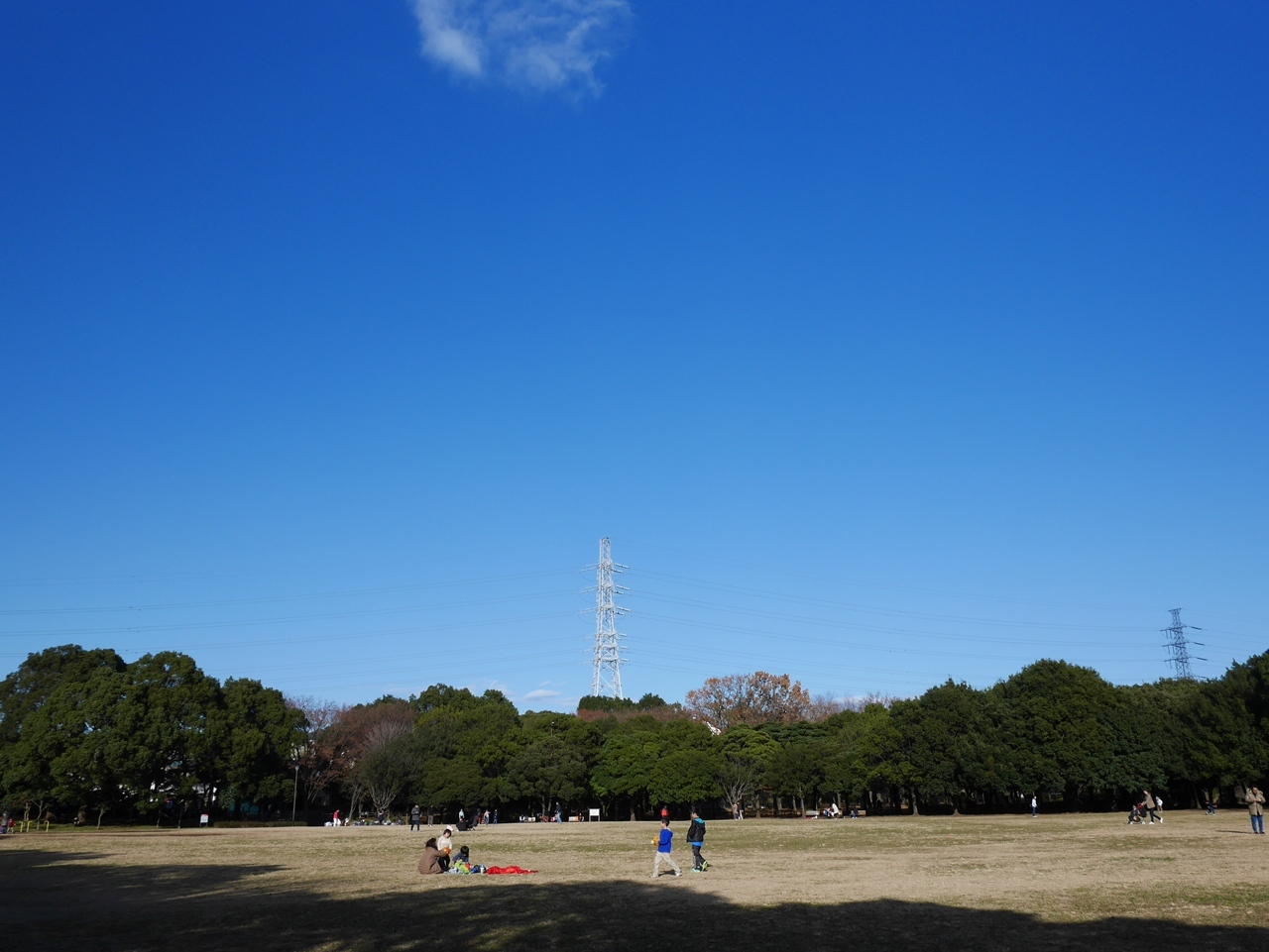 161211港の見える丘公園-03
