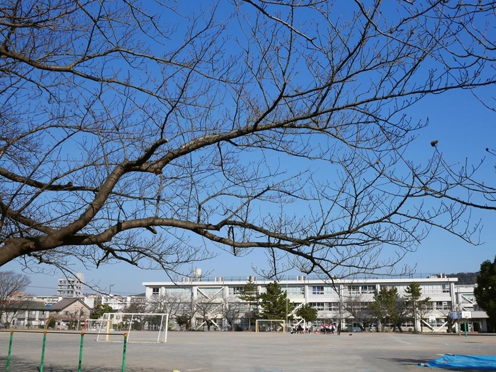 161221観音崎-04