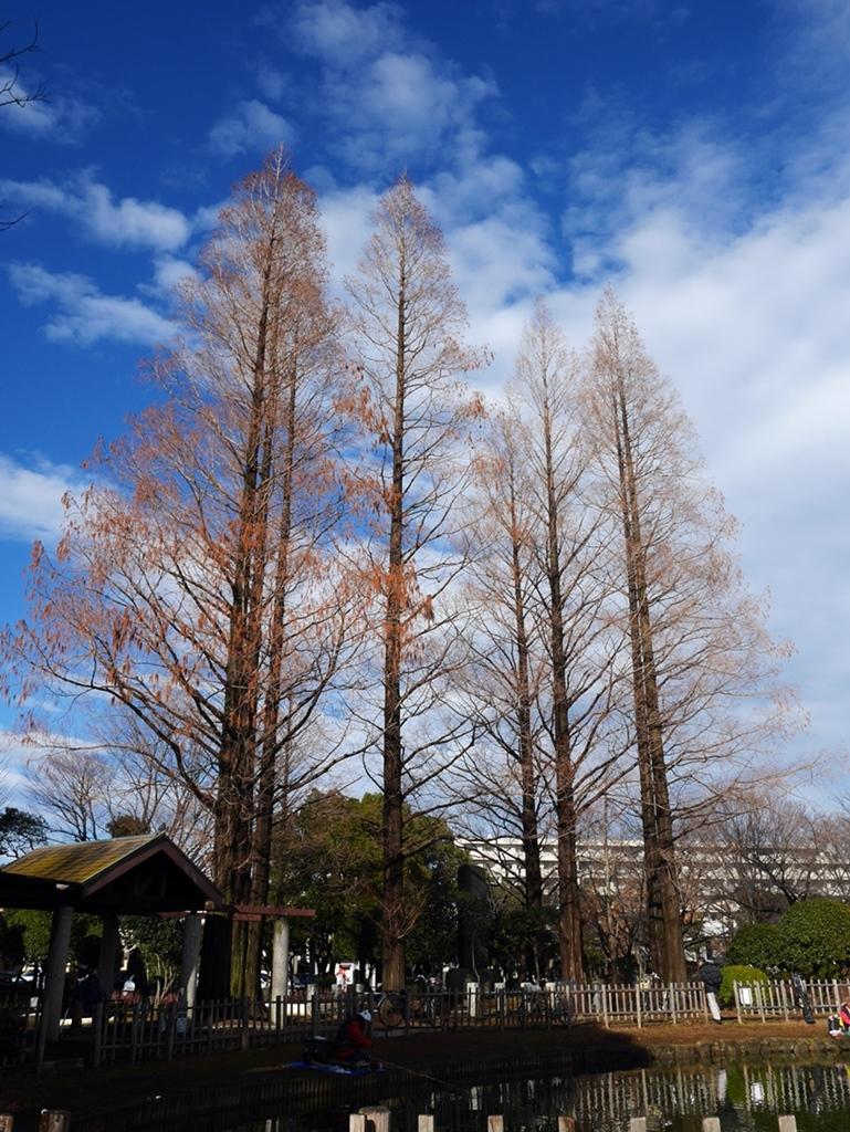 170109竹ノ塚-03