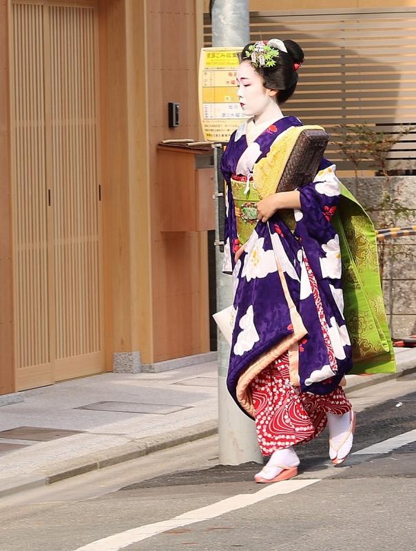 2016初舞妓②