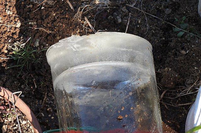 バケツの氷