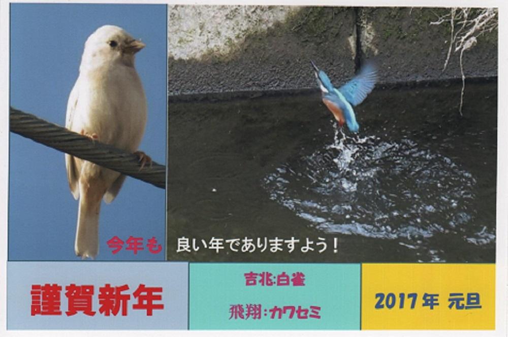 ブログ用年賀2017