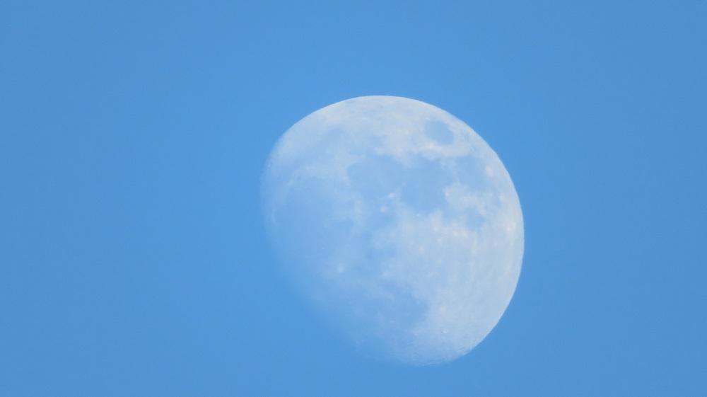 2昼間の月IMG_0658